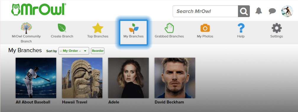 my branches page image